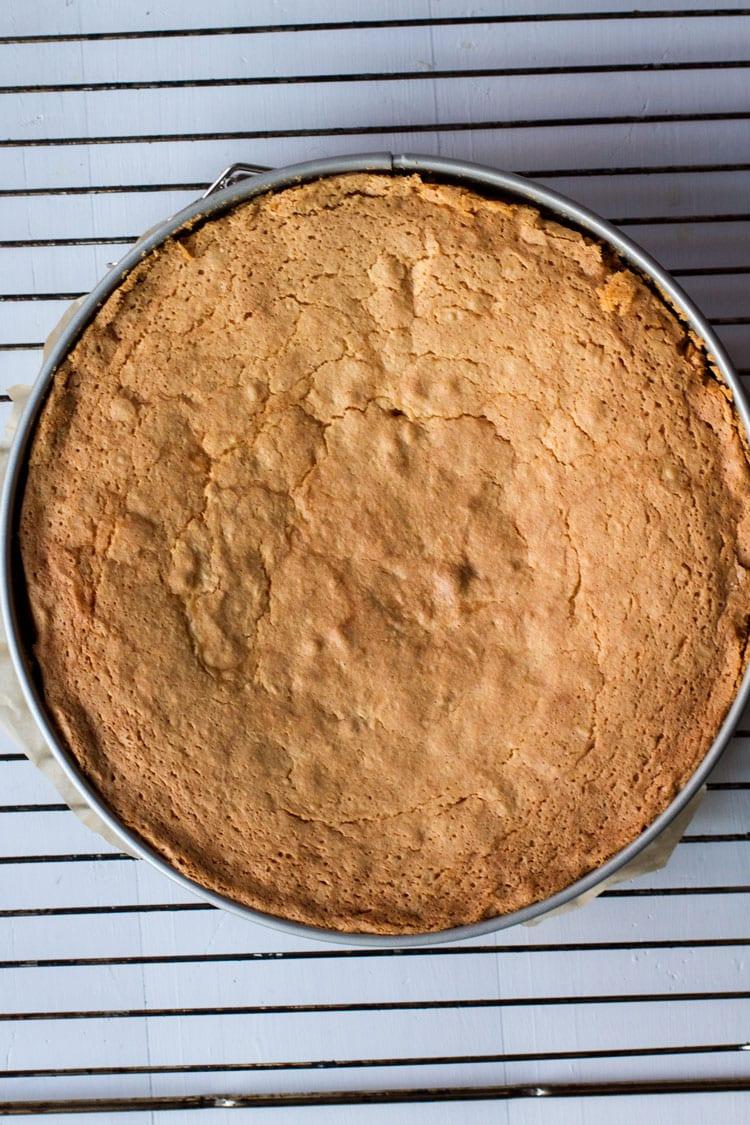 Vanilla Ricotta Cake for Tiramisu on a cooling rack.