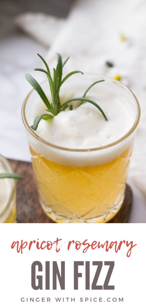 Apricot Rosemary Gin Fizz Pinterest Pin.