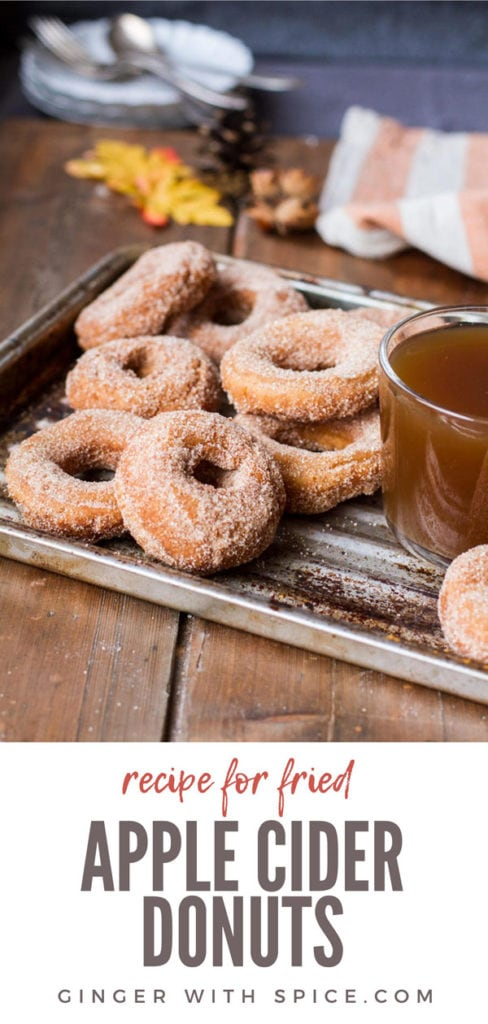 Apple cider donuts and glass of apple cider on a metal pan, wooden table. Pinterest pin.